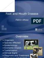 FootMouthDisease.ppt