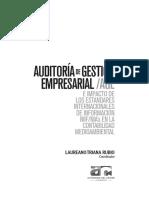 Auditoría de Gestión Empresarial Age