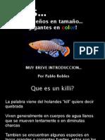 Killifish Presentation