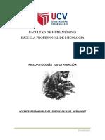 Psicopatologia Atencion