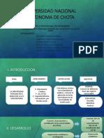 Universidad Nacional Autonoma de Chota