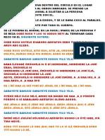 187638561-Instruciones-Paraldo.pdf