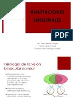 EXPO Adaptaciones Sensoriales