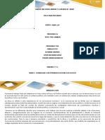 Plantilla de Informacion Tarea 2 Final Docx