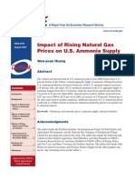 natural gas prices.pdf