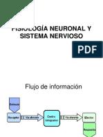 II° Año Medio. 2018. Fisiología Neuronal y Sistema Nervioso