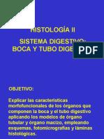 conferencia4dehistologia2tubodigestivolizette-170810231348
