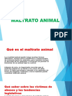 Maltrato Animal Sary 2