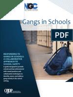 Gangs in Schools