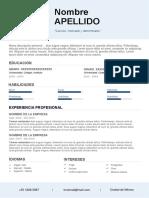 58-curriculum-vitae-hecho.docx