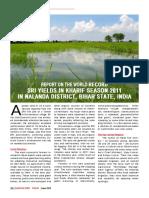India Bihar Paddy Record Yield SRI