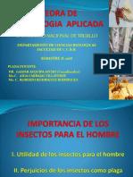 1° CLASE ENT. APLIC._IMPORTANCIA DE LOS INSECTOS