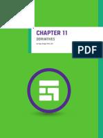 11-derivatives.pdf
