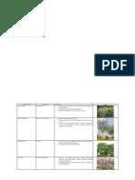 Plant List