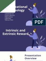 Intrinsic and Extrinsic Reward (3)