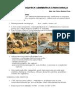 1-Classificacao Zoologica Ou Sistematica Do Reino Animalia-Invertebrados