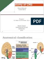 CSS anatomi CNS.pptx