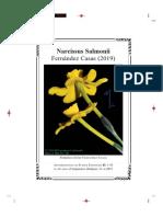 Narcissus Salmonii Fernández Casas (2019)