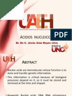 acidos_nucleicos.pptx