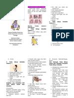 Leaflet Tanda Bahaya Kehamilan