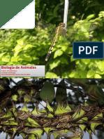 Artropodos Insectos Crustaceos Miriapodos y Aracnidos Colombia