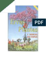 Plantas e Ervas a Medicina Do Simples