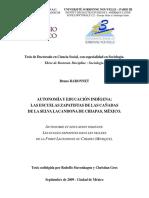 tesis_baronnet_unlocked.pdf