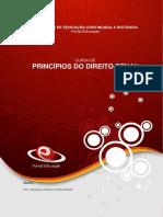 Princípios do Direito Penal.pdf