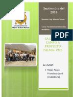 Informe Proyecto Palma