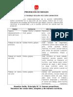 AST CARNICERIA.pdf