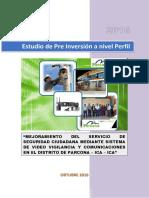 PerfilSeguridadCiudadana.pdf