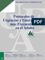 2009006.pdf