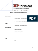 consejo de defensa nacional.docx