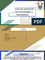 1.4.19 Presentacion Biomol