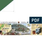 Region Amazonas