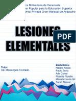 LESIONES ELEMENTALES EN CAVIDAD BUCAL