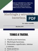 Morfologia y Estructura Bacteriana SIN INFO