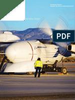 2013 Env Report Summary Spanish