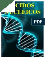 ACIDOS NUCLEICOS 17-18-170910104832