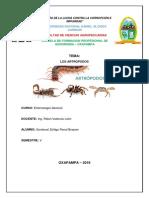 informe artropodos.docx
