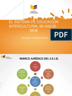 PRESENTACION PARA DZEIB.pdf