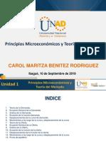 PRESENTACION_MICRO.pdf