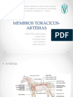 MEMBROS TORÁCICOS- ARTÉRIAS