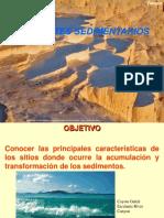 ambientes sedimentarios expo.pdf