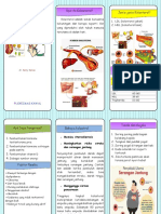 Leaflet-kolesterol-ok-docx.docx