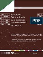 EPJA_Completo_Adaptaciones-Curriculares.pdf
