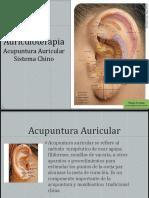 268853555-Auriculoterapia-Presentacion-DF.pptx