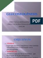 EXPOSICIONES GLUCONEOGENESIS 11