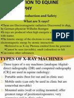 Equine Radiography 2019