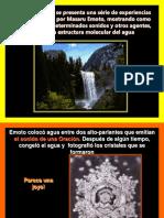 estructura del agua mashero emoto
